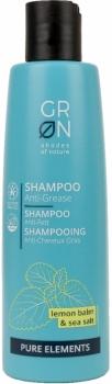 Grön Anti Fett Shampoo | Pure Elements 250ml